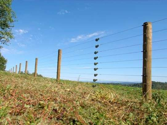 Electric Fence And Razor Wire Installation image 5