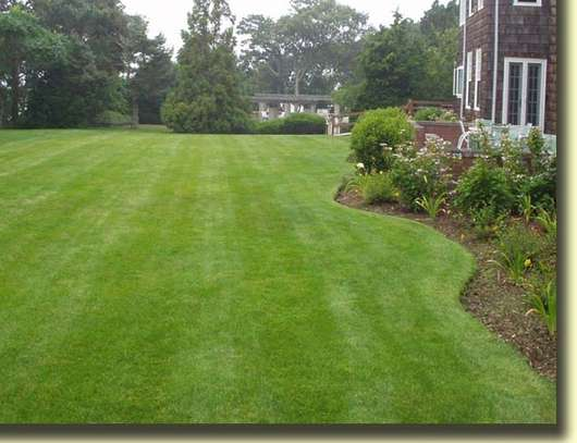 Need Excellent Landscaping Services,Garden Maintenance,Water Features? image 2