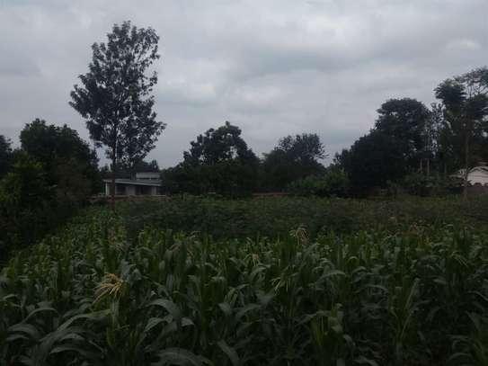 Runda - Land, Residential Land image 1