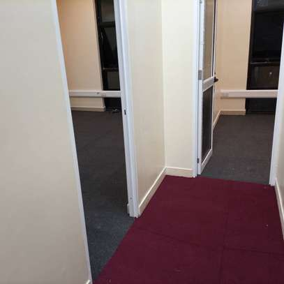 Low Price Wall To Wall Carpet   [Delta 4mm thick]