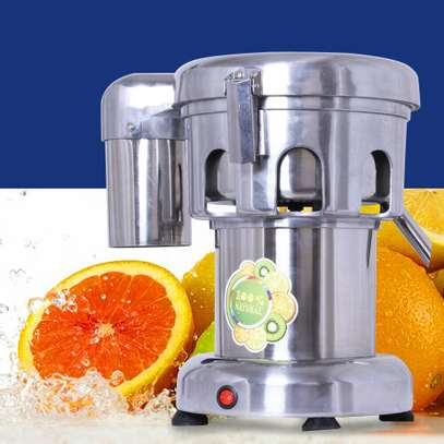 Commercial Fruit Vegetable Extractor Juicer image 1