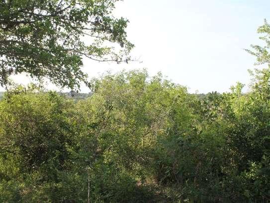 Kilifi - Land image 4