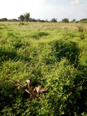 3 Acres in Gongoni Malindi