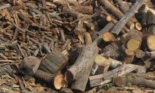 Firewood For Sale - Delivered to You Nairobi image 3
