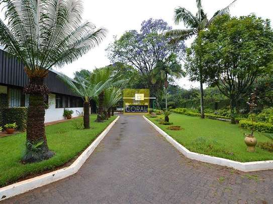 Muthaiga Area - House, Bungalow image 3