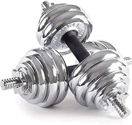Chrome Gym Dumbbells 10kg image 1