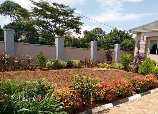 Landscaping, gardening and maintaining. image 5