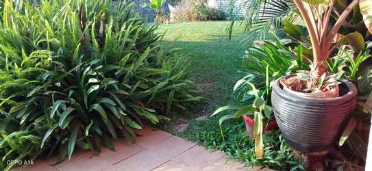 Accommodation available in ruiru BED AND BREAKFAST in kamakis area image 5