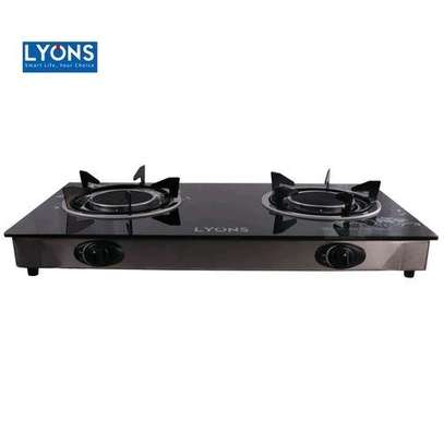 Lyons two burner image 1