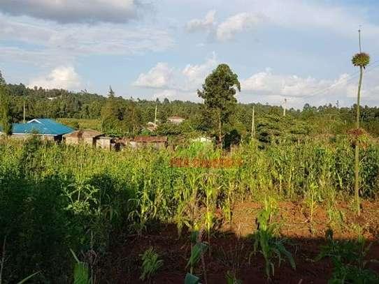 Gikambura - Land image 6