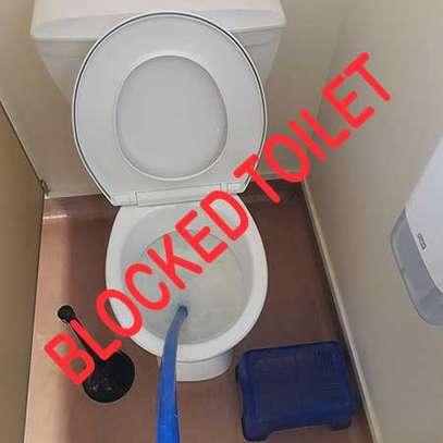Are you looking for:Toilet Installation | Plumber| Bathroom Remodel | Shower or Bathtub | Toilet Repair | Bathtub Repair | Plumbing & More ? image 11