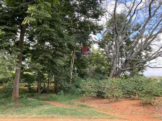 0.25 ac land for sale in Ruiru image 9