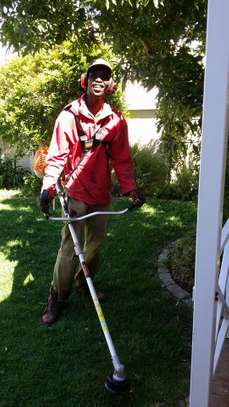 Best Lawn and Garden Services in Nairobi .100% Satisfaction Guaranteed.Get A free Quote.