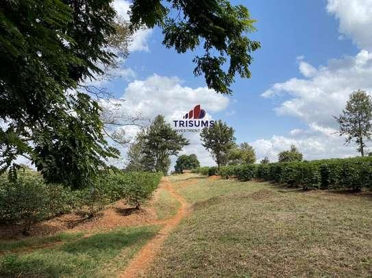 0.25 ac land for sale in Ruiru image 1