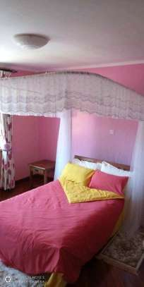 2 stand Mosquito net with rails image 4