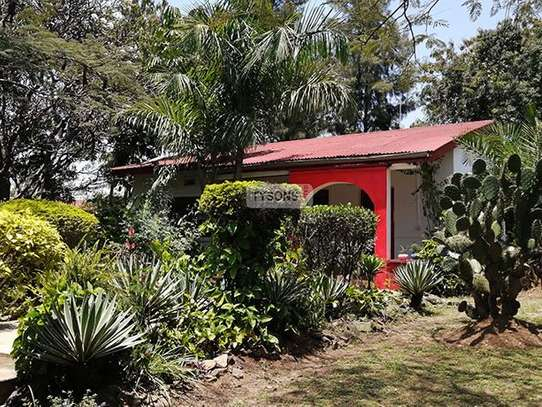 Kisumu Central Area - Bungalow, House image 2