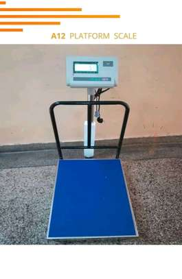 Approved A12 Indicator Digital Weighing Scales for LPG Gas Vendors image 4