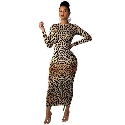 Leopard Print Maxi Dress image 2