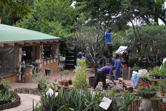 Gardening Services Nairobi /Landscape & Garden Designs image 14