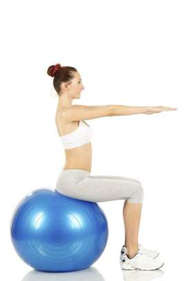 Gym Ball - Free delivery image 1