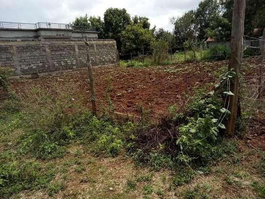 Land for sale in Kikuyu image 6