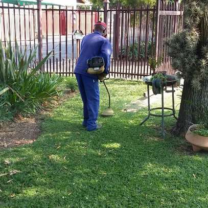 Bestcare Gardening Services | Professional Landscapers & Gardeners.Quality, Reliability & Affordable Rates. image 5