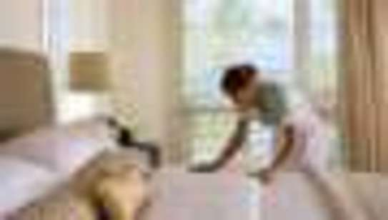 Bestcare Domestic and House Cleaning Services image 2