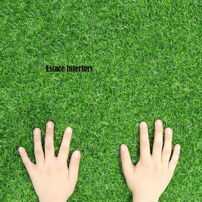 Turf Grass image 2