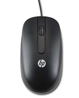 mouse image 1
