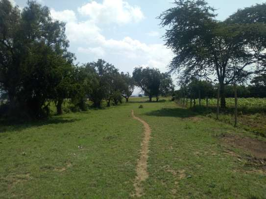 1acre land for sale in Naivasha image 9