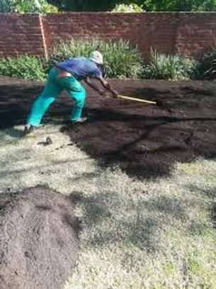 Bestcare Gardening Services | Professional Landscapers & Gardeners.Quality, Reliability & Affordable Rates. image 6