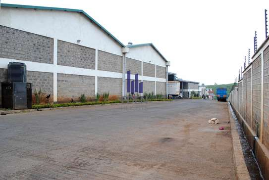 90000 ft² commercial property for sale in Limuru Area image 14