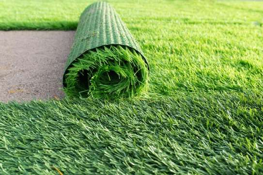 ARTIFICIAL TURF image 1