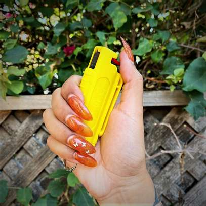 Self Defense Protection Pepper Spray image 1