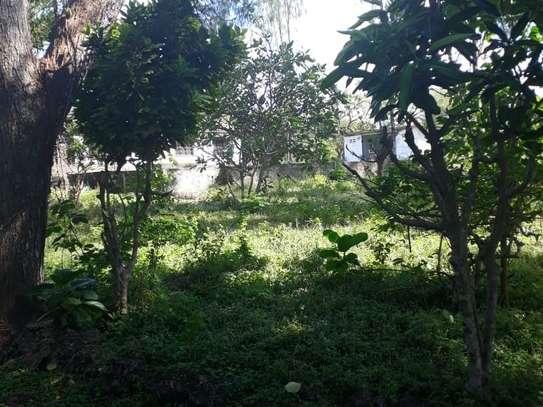 Kikambala - Land, Residential Land image 9