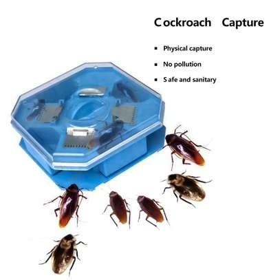Home Kitchen Office Reusable Cockroach Traps Box image 1