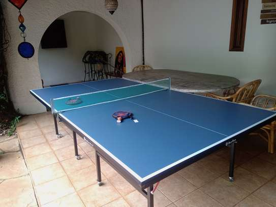 Brand new foldable and movable table tennis.