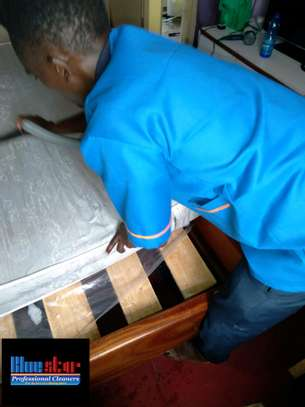 Bluestar Professional Cleaners Ltd image 1