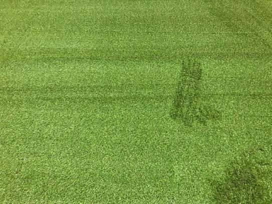 grass carpet influence on beauty and texture image 9