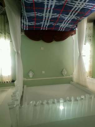 Rail Shears Mosquito Nets Sliding Like Curtains Fixed On The Ceiling image 8