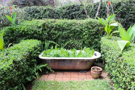 Furnished 2 bedroom house for rent in Old Muthaiga image 2
