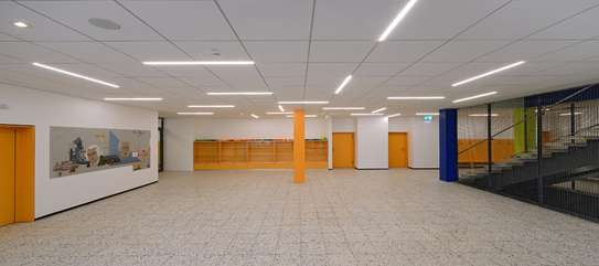 Acoustic ceilings