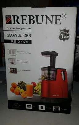 Rebune electric juicer image 1
