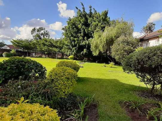 Lavington - Commercial Property image 7