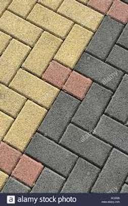 Coloured Cabro image 6