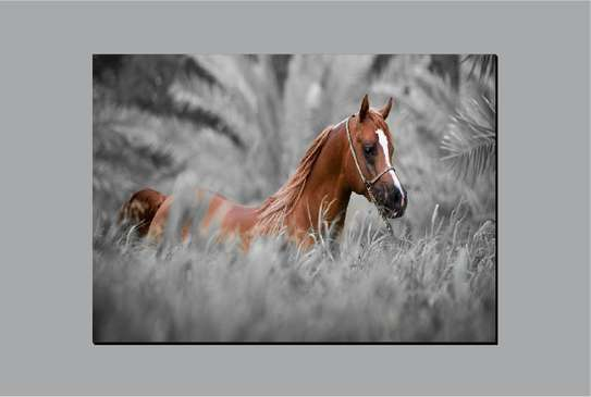 Steady Horse Wall Hanging Art image 1