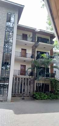 2 bedroom apartment for rent in Milimani image 1