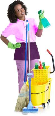 Hire Best House Cleaning, Deep Cleaning, Carpet Cleaning, Move-In or Move-Out Cleaning, Window Cleaning & Domestic Workers.Get A Free Quote. image 5