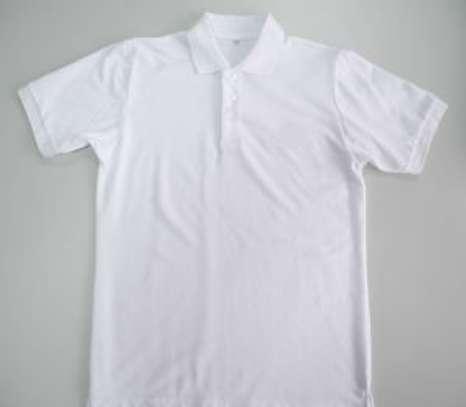 plain polo t shirts image 2