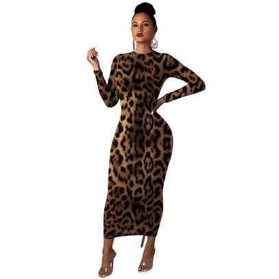 Leopard Print Maxi Dress image 4